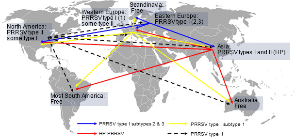 PRRS virus global distribution and hypothetical intercontinental transmission