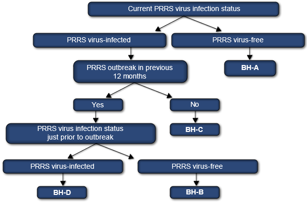 PRRS virus classification system for swine sow herds