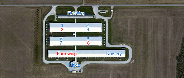 6000 sow farm in Indiana (part of a 15,000 sow system) with internal multiplication