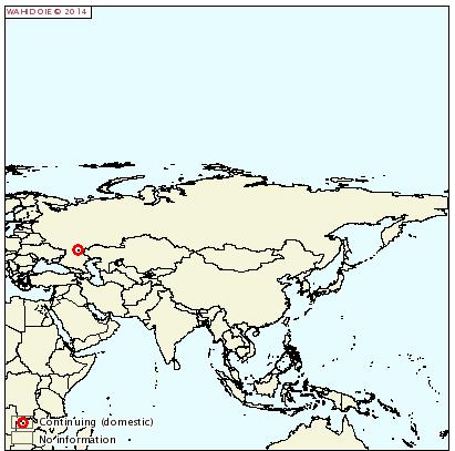ASF-russia201401223