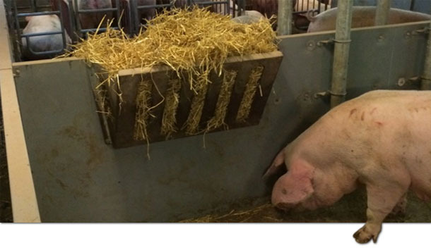 Use of feeders with straw.