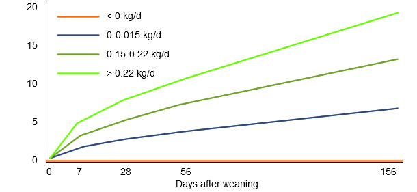 Influence of the weight gain during the first week after the weaning in the subsequent production results