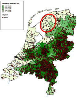 Distribution of pig farms in the Netherlands
