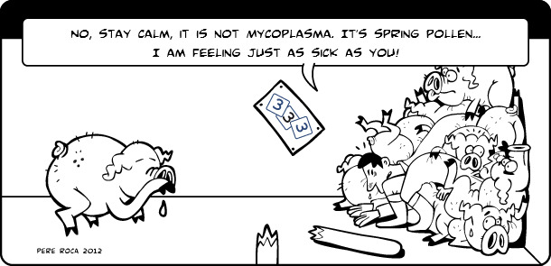 It's not Mycoplasma