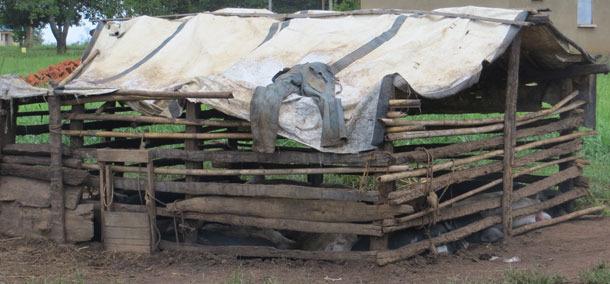 Example of poor housing in Uganda