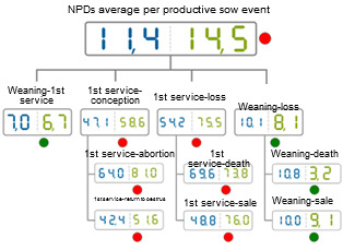Comparative of the NPDs in 2012 classified according to the sow event. Average of the database (blue) vs the average on the analysed farm (green)