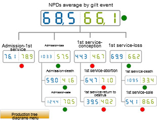 Comparative of year 2012 of the NPDs according to the gilt event. Average of the database (blue) vs the average on the analysed farm (green)