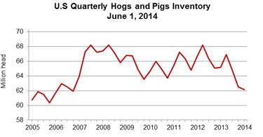 hog inventory