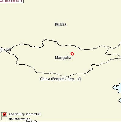 CSF Mongolia