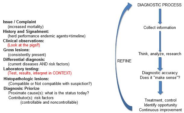 "Diagnostic ""alignment"": All information should make sense"