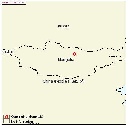 csf-mongolia