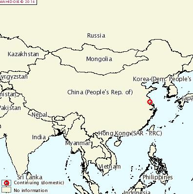 fmd china