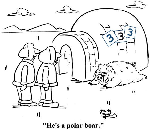 The polar boar