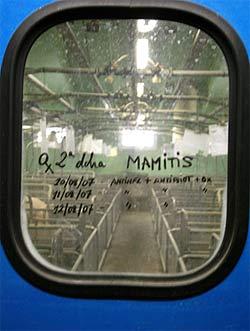 Notes on the swine farm door windows