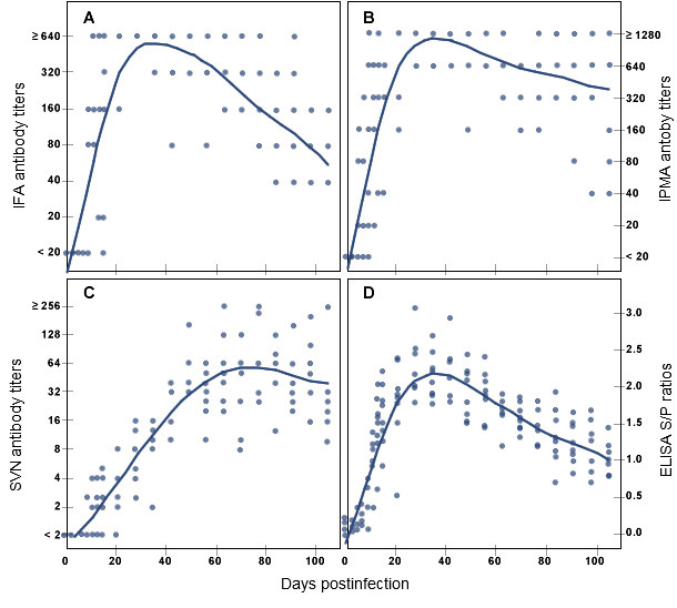 PRRSV specific antibody response in pigs over time after experimental infection