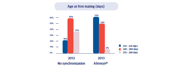Reduction of the average mating age in the gilts per year by 18 days