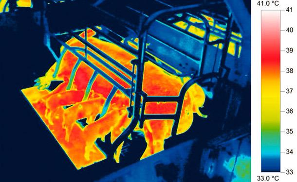 Thermal image of nursery