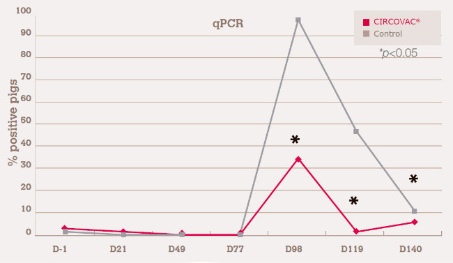 decreasing PCV2 fecal shedding