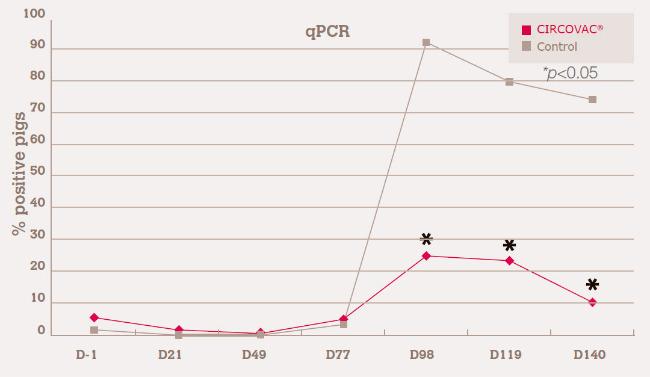 decreasing PCV2 viraemia
