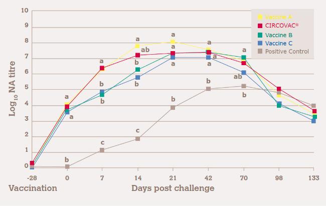 HIGHER PCV2-SPECIFIC NEUTRALIZING ANTIBODY TITRES VS. SUBUNIT VACCINES