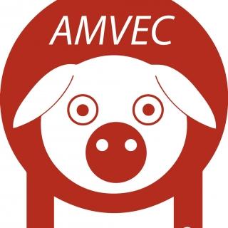 La AMVEC. A.C.